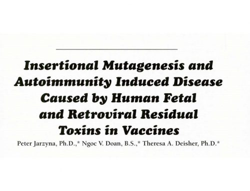 Insertional Mutagenesis and Autoimmunity Induced Disease Caused by Human Fetal and Retroviral Residual Toxins in Vaccines